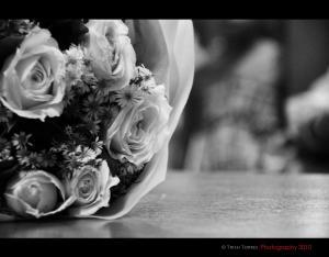 Wedding Ceremony 08/18/2010